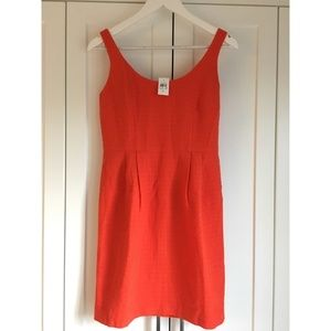 Ann Taylor Textured Sheath dress - New with tags